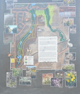 Kiosk Panel at Amon Creek Preserve (click to enlarge)