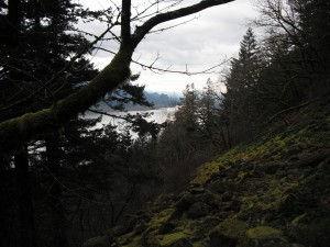 Columbia River Gorge from Multnomah Falls Trail