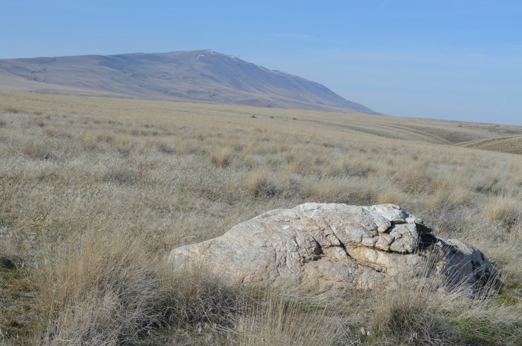 Large Granodiorite Erratic with Rattlesnake Mountain in the Background