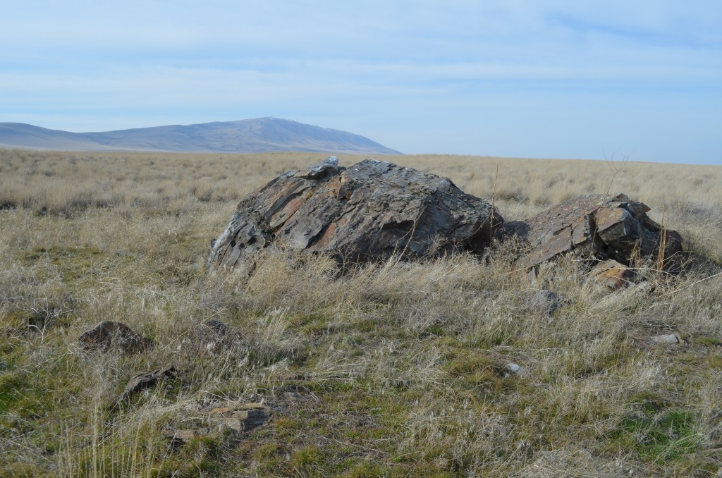 Huge Erratic of Banded Argillite the Size of a VW Bug that Floated here on Ice Flows During the Great Floods Shaped the Columbia Basin (click pic to enlarge)