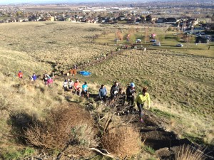 Badger Mountain Challenge 2014