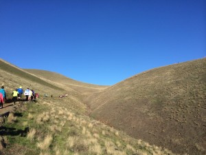 Badger Mountain Challenge on the Canyon Trail