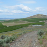 Deal for Little Badger Mountain Open Space Protection?