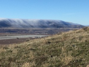 Horse Heaven Hills with foggy blanket, view from the top of Red Mountain