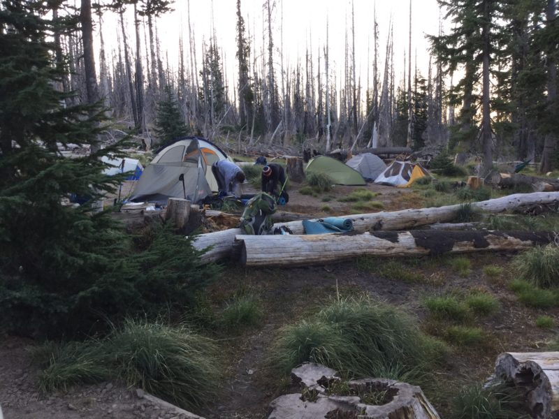 Tents at Cold Springs Campground at Mt. Adams 3